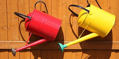 Watering Can - Gardening Blog